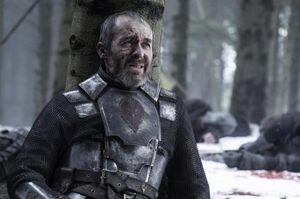 510 Stannis liegt im Sterben