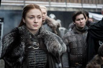 who does sansa stark marry