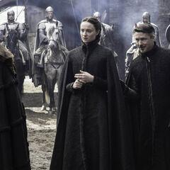 Game Of Thrones Der Hohe Spatz