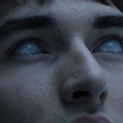 Bran recieves a vision.