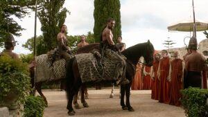 101 Drogos Blutreiter