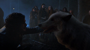 S04E5 - Jon Snow & Ghost