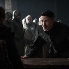 Petyr fleht Sansa an