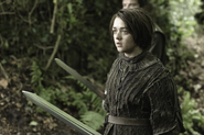 Dark Wings Dark Words still Arya