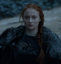 Sansa Wolf Dress Season 6