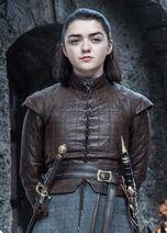 Arya-Stark