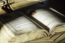 401 Buch der Königsgarde