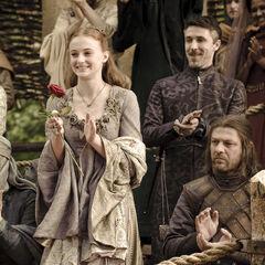 Sansa applaudiert beim Turnier der Hand für Ser Loras Tyrell
