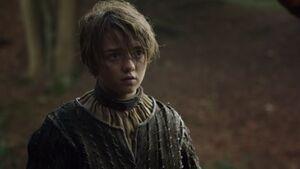 202 Arya und Gendry