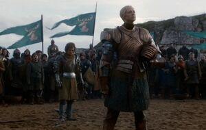 203 Briennes Sieg