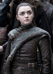 Arya Season 8