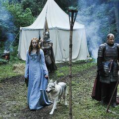 Sansa und Lady