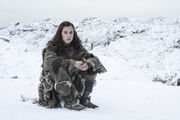 Game-of-thrones-season-6-ellie-kendrick