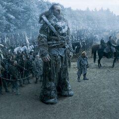 Die Stark Armee
