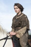 Arya Stark profile Season4