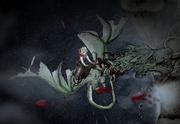 Lucerys and Arrax death