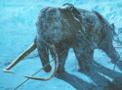 Mammoth-Portal