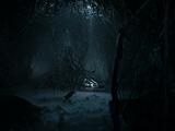 Caverna do corvo de três olhos