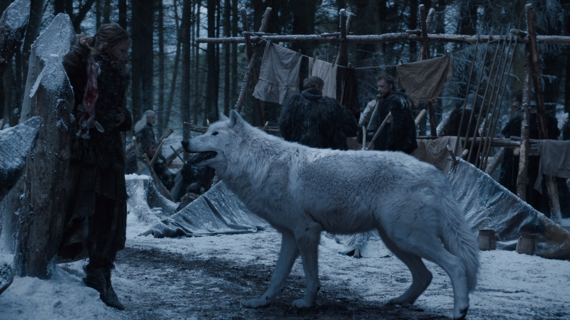 Direwolves game of thrones wiki fandom powered by wikia behind the scenes biocorpaavc Image collections