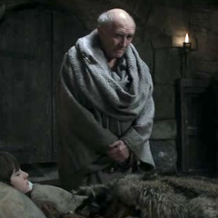 Maester <a href=