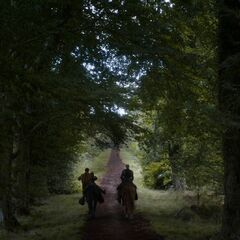 Brienne und Podrick auf dem Königsweg Richtung Norden.