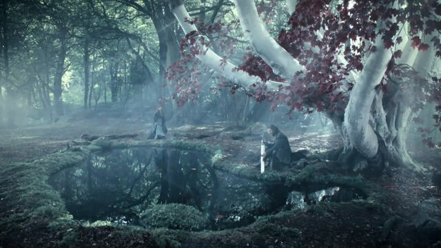 File:Winterfell Godswood.jpg