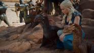 Dragons at Yunkai