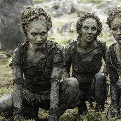 Kinder des Waldes in Staffel 6