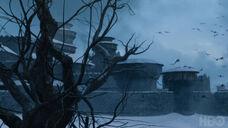 705 Winterfell Ravens
