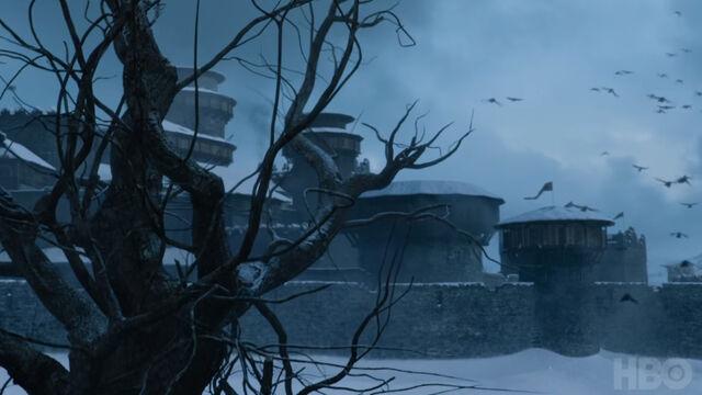 File:705 Winterfell Ravens.jpg