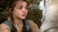 Nymeria e Arya-Stark se despedem