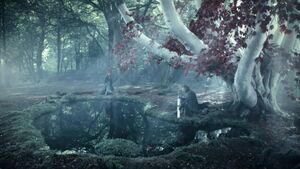 Bosque Sagrado de Winterfell