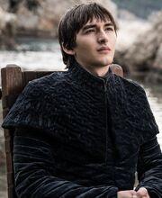 806 Bran Profil