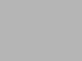 Forest of Qohor