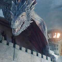 Drogon besucht Daenerys in Meereen.