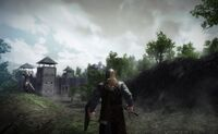 Game of Thrones MMO3