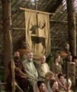 Baratheon tourney 2