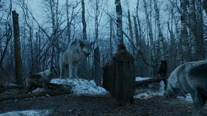 702 Arya trifft auf Nymeria