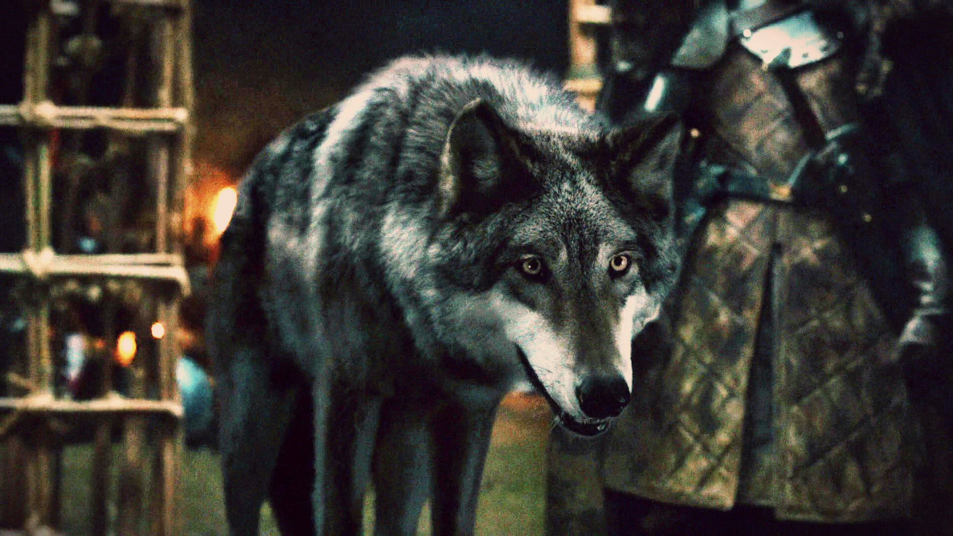 Size does matter two scene two dark wolf