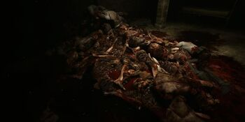 Outlast Shot 2
