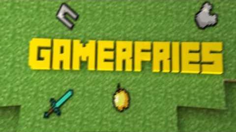 Gamerfries Intro