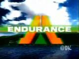 Endurance Logo