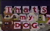 That's my dog cartoon