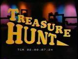 Treasure Hunt Pilot