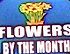 Flowers By The Month