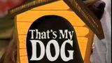 That's My Dog (2)