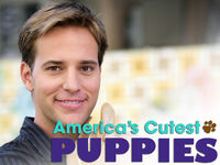 Americas-cutest-puppies