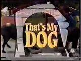 That's My DOG!