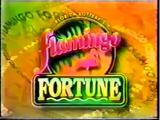 Flamingo Fortune