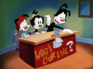Animaniacs What's Our Line